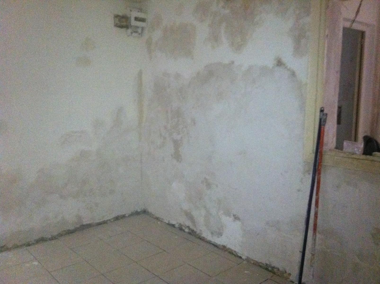תיקון קיר מתקלף